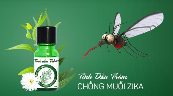 4 cách diệt muỗi tự nhiên không cần dùng đến thuốc